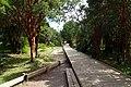 Parque Nacional Chiloé 07.jpg
