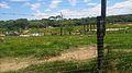 Parque Temático Hacienda Nápoles 54.jpg