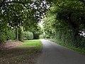 Part of Woolmers Lane - geograph.org.uk - 1495686.jpg