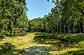 Pavlovsk Park 2013-01.jpg