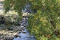 Pcinja river valley 08.jpg