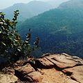 Peak view at satpura tiger reserve.jpg