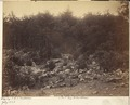 Pennsylvania, Gettysburg Battlefield, Slaughter Pen - NARA - 533318.tif