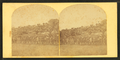People in grandstands at Hampden Park, from Robert N. Dennis collection of stereoscopic views.png