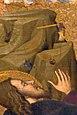 Pere Serra. Esperit Sant-Transfiguracio-destral.jpg