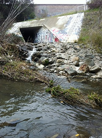 Stevens Creek (California) - Looking west, from east side of Stevens Creek, at terminus of Permanente Creek Diversion Channel as it exits beneath Highway 85. Here Permanente Creek drops about ten vertical feet over cemented boulders, an impassable barrier to in-migrating steelhead trout, 2013.