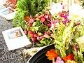 Petits radis au marché de Sorgues.jpg