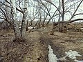 Petra Dubrava, Samarskaya oblast', Russia, 443546 - panoramio (3).jpg