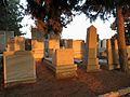 Photo 2בית הקברות בשעת דימדומים.jpg