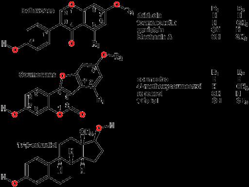 Phytoestrogens2