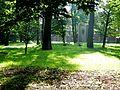Piękny pszczyński park 17.JPG