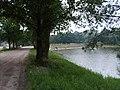 Piaski-Szczygliczka - panoramio.jpg