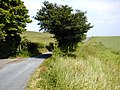 Pilgrim's Way at Wrotham Water - geograph.org.uk - 463718.jpg