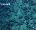 Pillow lavas, Sodade Seamount.png
