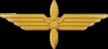 Pilot Abzeichen Tenu A