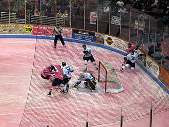 South Carolina Stingrays - The Stingrays battle in front of the Toledo Walleye goal at Pink in the Rink 2010.