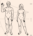 Pioneer plaque humans.svg