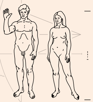 Humans extracted from the Pioneer plaque (File...