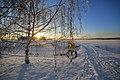 Pirkanmaa, Finland - panoramio (95).jpg
