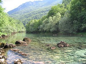 Piva (river) - 1,4 km of the Piva River flow through Bosnia and Herzegovina, before finally meets the Tara and create the Drina River.