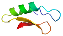 Cartoon representation of the secondary structure of plectasin.