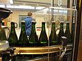 Pol Roger disgorgement line 3-frozen bottles.jpg
