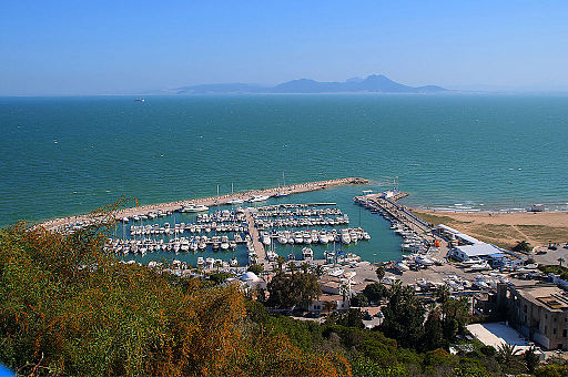 Port of Sidi Bou Said, Tunis, Tunisia, North Africa