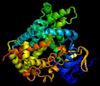 CYP2C19 protein-coding gene in the species Homo sapiens