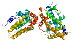 Protein PGR PDB 1a28.png