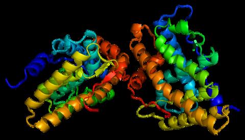 steroid dependent minimal change disease