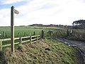 Public footpath near Black Heddon - geograph.org.uk - 312605.jpg
