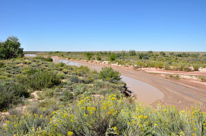 Puerco River - Flowing near Puerco Pueblo, in Petrified Forest National Park.