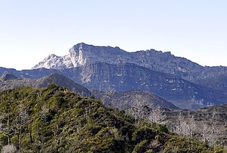 Puncak Trikora - Puncak Trikora from north.  Main summit (center left) and west ridge (right)