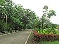 Puyo paseo turístico 5 ene 2015 028 (16033443099).jpg