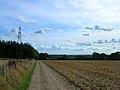 Pylons north of Locksash Farm - geograph.org.uk - 228099.jpg
