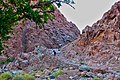 Qesm Sharm Ash Sheikh, South Sinai Governorate, Egypt - panoramio - youssef alam (5).jpg