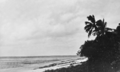 Queensland State Archives 1023 Green Island Great Barrier Reef c 1931.png