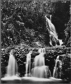 Queensland State Archives 401 Elabana Falls Canungra Creek West Branch Lamington National Park Beaudesert Shire September 1933.png