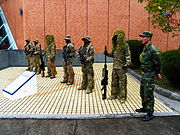 ROCA Special Force Team Line up at Armor School 20130302