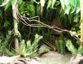 ROM-Jurassic-Diorama1.png