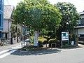 Rail trail (Ichinotsubo shortcut) - panoramio - Kaz Ish (2).jpg