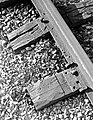 Railroad Track Ties, Texas and Pacific Railway Company (16312958922).jpg