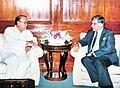 Ratan Tata.jpg