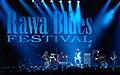 Rawa Blues Festival 2009 HooDoo Band 01.jpg