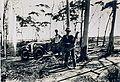 Ray Owen during Emu War.jpg