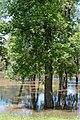 Red River, Moorhead (6011803804).jpg
