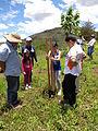 Reforestación en el IVIC-Mérida.JPG