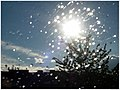 Regen 8136 (4462322381).jpg