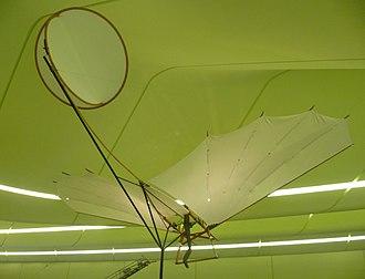 Percy Pilcher - Replica of the Bat in Glasgow's Riverside Museum