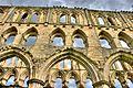 Rievaulx Abbey ruins 16.jpg